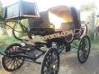 Indian  Army Horse Carriage For Wedding