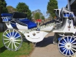 White  Blue  Victoria  Horse  Carriage  For Sale