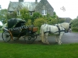 Stylish Black  Victoria Carriage For Sale