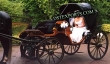 Two  Seater Black  Victoria  baghi