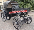Black  Victoria  Horse  Carriage