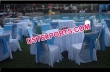 Designer Chair Covers With Sky Blue Sashas