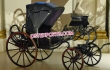 Two Seater Mini Victoria Buggy