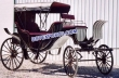 Horse Drawn Antique Carriage Buggy