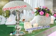 Wedding Latest Crystral Center Piece Umberella