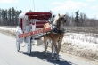 Elegent  Victoria  Horse  Drawn Carriage For Sale