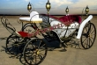 Beautifull  Carriage  With  Lights For Sale