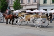 Tourist  Horse Drawn  Baghi For Supplier