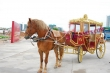 Royal  Golden  Horse  Drawn  Carriage For supplier