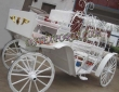 Indian Victoria  Horse  Carriage  For Supplier