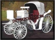 Two  Seater   Victoria  Carriages