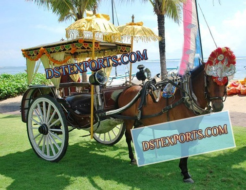 Indian Wedding Decorative Carriage
